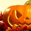 Download pumpkin cover, pumpkin cover  Wallpaper download for Desktop, PC, Laptop. pumpkin cover HD Wallpapers, High Definition Quality Wallpapers of pumpkin cover.