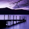 purple dusk,nature landscape Wallpapers, nature landscape Wallpaper for Desktop, PC, Laptop. nature landscape Wallpapers HD Wallpapers, High Definition Quality Wallpapers of nature landscape Wallpapers.