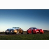 Red Amp Golden Cars On Field Wallpaper