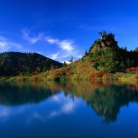 Reflection Of Autumn Trees Wallpapers