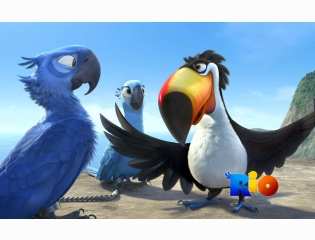 Rio Movie 2 Wallpapers