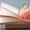 Download rose pink flower books pages, rose pink flower books pages  Wallpaper download for Desktop, PC, Laptop. rose pink flower books pages HD Wallpapers, High Definition Quality Wallpapers of rose pink flower books pages.