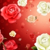 Download roses hd widescreen, roses hd widescreen  Wallpaper download for Desktop, PC, Laptop. roses hd widescreen HD Wallpapers, High Definition Quality Wallpapers of roses hd widescreen.