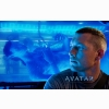 Sam Worthington In Avatar Wallpapers