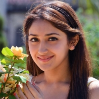 Sayesha Saigal Telugu Actress