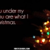 Download see you under my tree cover, see you under my tree cover  Wallpaper download for Desktop, PC, Laptop. see you under my tree cover HD Wallpapers, High Definition Quality Wallpapers of see you under my tree cover.
