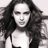 Shazahn Padamsee 2013 Latest Wallpaper