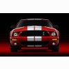Shelby Cobra Gt500 Mustang 6 Hd Wallpapers