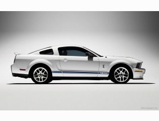 Shelby Cobra Gt500 Mustang 7 Hd Wallpapers