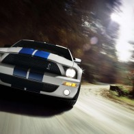 Shelby Cobra Gt500 Mustang 9 Hd Wallpapers