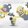 Download Shut Up And Love Minions Wallpaper, Shut Up And Love Minions Wallpaper Hd Wallpaper download for Desktop, PC, Laptop. Shut Up And Love Minions Wallpaper HD Wallpapers, High Definition Quality Wallpapers of Shut Up And Love Minions Wallpaper.