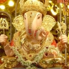 Download siddhivinayak wallpaper for pc, siddhivinayak wallpaper for pc  Wallpaper download for Desktop, PC, Laptop. siddhivinayak wallpaper for pc HD Wallpapers, High Definition Quality Wallpapers of siddhivinayak wallpaper for pc.