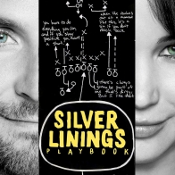 Silver Linings Playbook Hd Wallpapers