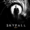 Download Skyfall Wallpapers HD & Widescreen Games Wallpaper from the above resolutions. Free High Resolution Desktop Wallpapers for Widescreen, Fullscreen, High Definition, Dual Monitors, Mobile