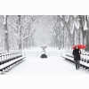 Snow Hd Wallpaper 12