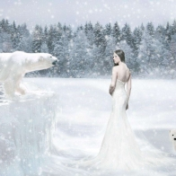 Snow Hd Wallpaper 15