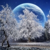 snow hd wallpaper 26,nature landscape Wallpapers, nature landscape Wallpaper for Desktop, PC, Laptop. nature landscape Wallpapers HD Wallpapers, High Definition Quality Wallpapers of nature landscape Wallpapers.