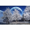 Snow Hd Wallpaper 26