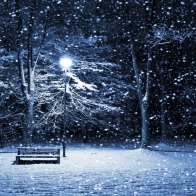 Snow Hd Wallpaper 2