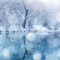 Snow Hd Wallpaper 3