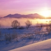 snowy dawn,nature landscape Wallpapers, nature landscape Wallpaper for Desktop, PC, Laptop. nature landscape Wallpapers HD Wallpapers, High Definition Quality Wallpapers of nature landscape Wallpapers.