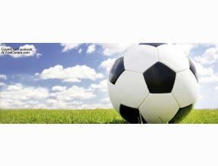 Soccer Ball Cover