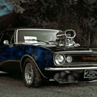 Something To Tempt You Wallpaper