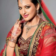Sonakshi Sinha In Sarri Wallpaper