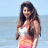 sonarika jadoogadu, sonarika jadoogadu  Wallpaper download for Desktop, PC, Laptop. sonarika jadoogadu HD Wallpapers, High Definition Quality Wallpapers of sonarika jadoogadu.