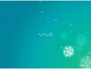 Sony Vaio 10 Wallpapers