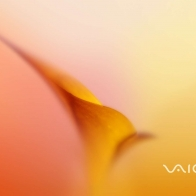 Sony Vaio 4 Wallpapers