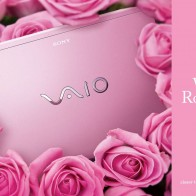 Sony Vaio Romance Wallpapers