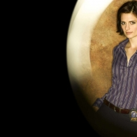 Stana Katic Wallpaper Wallpapers