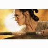 Star Wars The Force Awakens Rey
