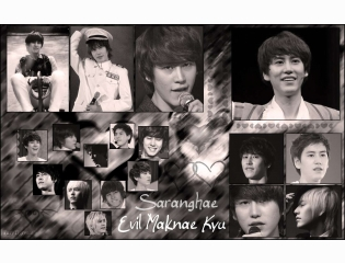 Super Junior Cho Kyuhyun Wallpaper