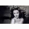 Susan Hayward Wallpaper