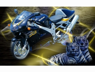 Suzukitl1000 R Tigers Wallpaper