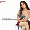 Download tamanna wallpaper, tamanna wallpaper  Wallpaper download for Desktop, PC, Laptop. tamanna wallpaper HD Wallpapers, High Definition Quality Wallpapers of tamanna wallpaper.