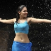 tamannaah bhatia, tamannaah bhatia  Wallpaper download for Desktop, PC, Laptop. tamannaah bhatia HD Wallpapers, High Definition Quality Wallpapers of tamannaah bhatia.