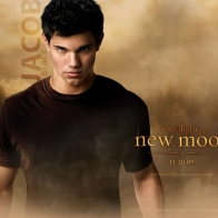 Taylor Lautner In Twilight Wallpaper