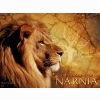 The Chronicles Of Narnia Aslan