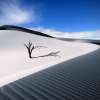 Download the dune wallpapers, the dune wallpapers Free Wallpaper download for Desktop, PC, Laptop. the dune wallpapers HD Wallpapers, High Definition Quality Wallpapers of the dune wallpapers.