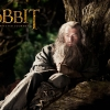 Download The Hobbit: An Unexpected Journey 1 Wallpapers, The Hobbit: An Unexpected Journey 1 Wallpapers Free Wallpaper download for Desktop, PC, Laptop. The Hobbit: An Unexpected Journey 1 Wallpapers HD Wallpapers, High Definition Quality Wallpapers of The Hobbit: An Unexpected Journey 1 Wallpapers.