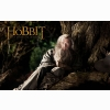 The Hobbit: An Unexpected Journey 1 Wallpapers