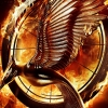 Download the hunger games catching fire 2013 wallpaper, the hunger games catching fire 2013 wallpaper Free Wallpaper download for Desktop, PC, Laptop. the hunger games catching fire 2013 wallpaper HD Wallpapers, High Definition Quality Wallpapers of the hunger games catching fire 2013 wallpaper.