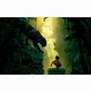 The Jungle Book 2016 Movie