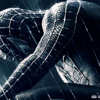 The Movie Spider Man Wallpaper