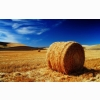 The Palouse Fields Wallpapers