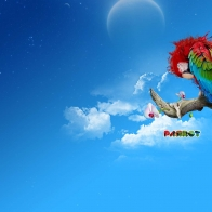 The Parrot Wallpapers