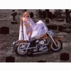 The Ripper Of Harley Davidson Wallpaper